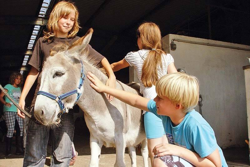 TTT-Jugendreisen | Deutschland | Trebendorf | Reinert Ranch 03